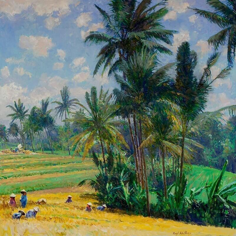 The Rice Fields of Bulan